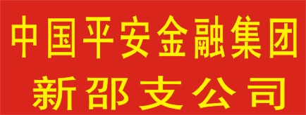 中国平安综合金融集团新邵支公司-永州招聘